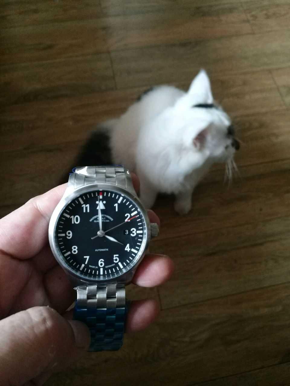 莫勒M1-37-44-MB手表【表友晒单作业】说说买表背...