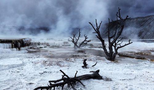 2012年第七届蕾蒙威Raymond Weil)国际摄影大赛揭幕