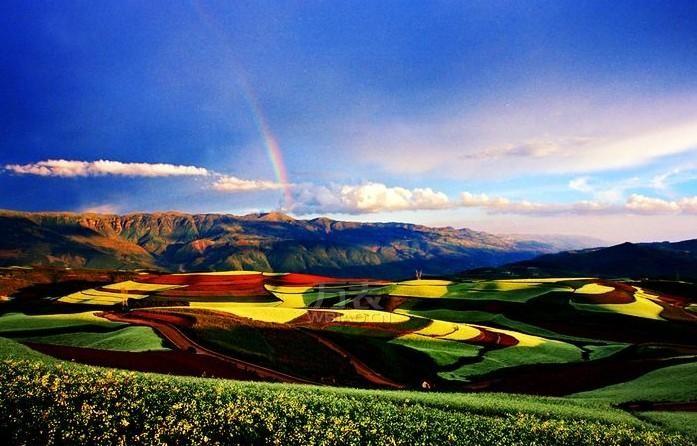 东川红土地停留的每个点都有鲜明的特色