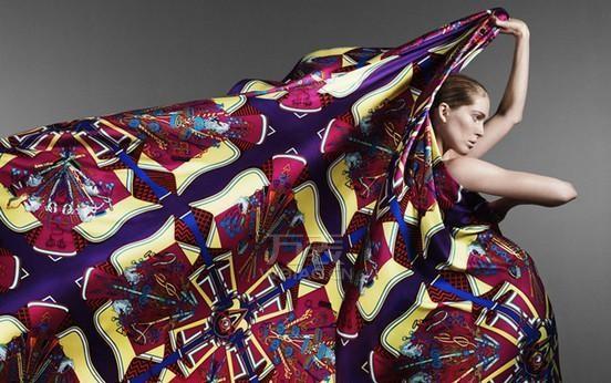 2014年最新爱马仕丝巾广告图片