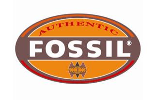 Fossil女表怎么样?Fossil,彰显个人风格的腕间必需品