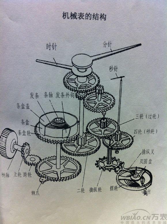 机械表机芯结构图